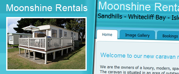 Thumbnail of the Moonshine Rentals website